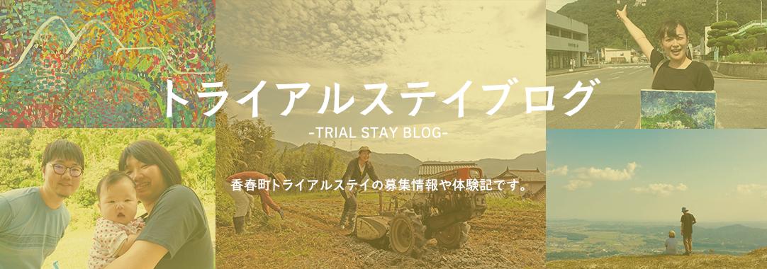 トライアルステイブログ